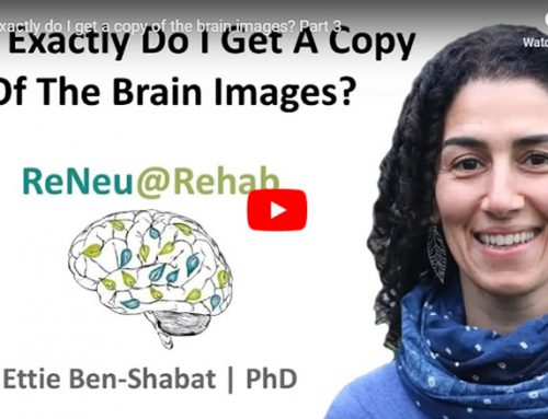 How Exactly Do I Get A Copy Of The Brain Images? – Part 3
